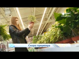 Первый городской дачник  скоро премьера. Новости Кирова.