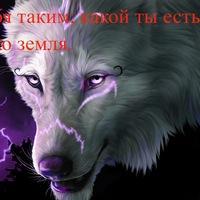 Акименко Вадим