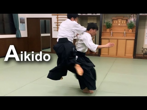 Aikido ‐ High speed throw with relax