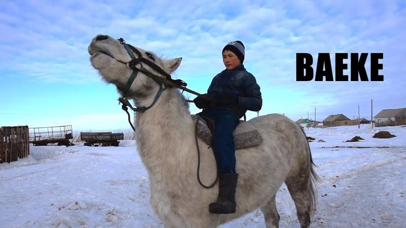 БАЕКЕ 10 жасында бірнеше миллион ақша ұтқан қызбелдік бала Скачки