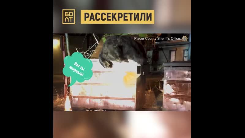 Русский шпион под прикрытием