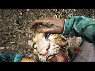 Прохождение игры Far Cry 4 Часть 7