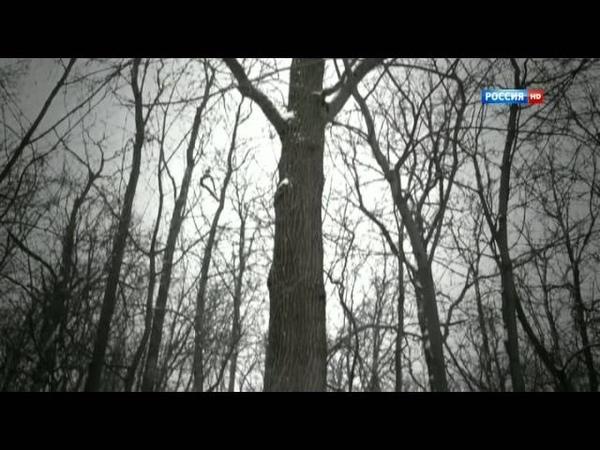 Особый случай 2013 Osobyj sluchaj 57 2013 HDTVRip