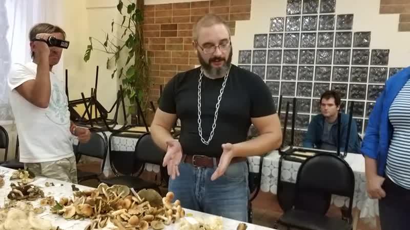 О смертельной опасности свинушки тонкой (Михаил Вишневский)