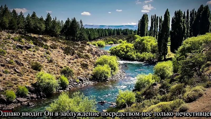 02 Сура Аль Бакара Корова Абу Бакр аш Шатри