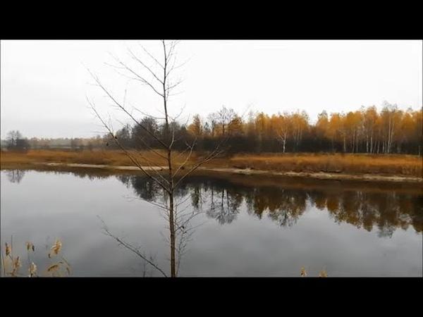 Дикая природа Беларуси, рыбалка, деревенская еда и многое другое в 2 - х частях, уже скоро!