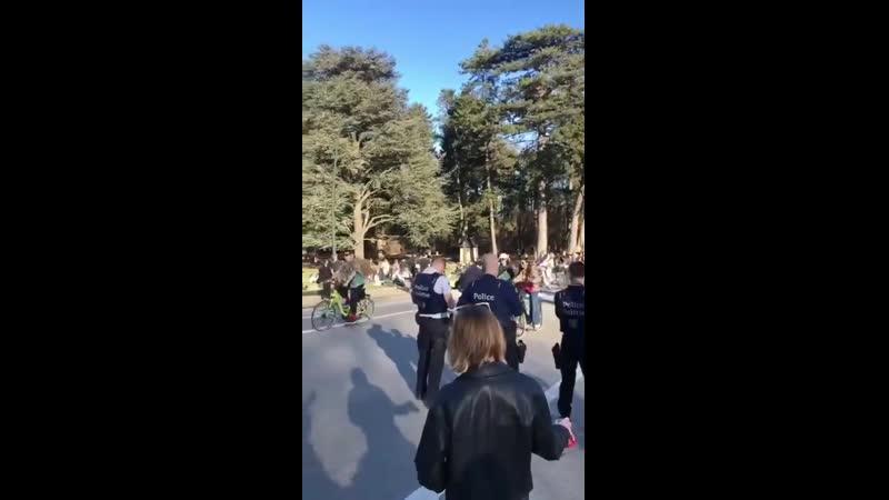 Wow Belgium over the weekend - Police look on helplessly as people return to normal