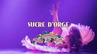 Pink flamingo burlesque act - Sucre d'Orge, Stockholm burlesque festival 2017