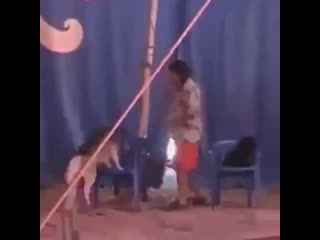 Когда пойдете в цирк, вспомните это видео. Цена радости