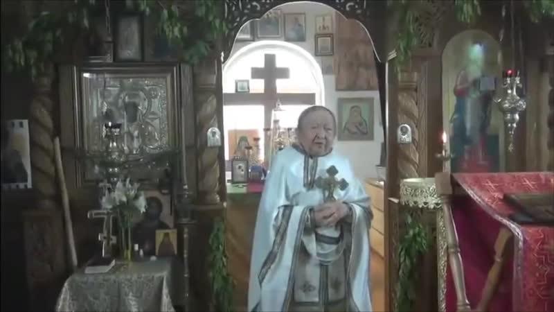 В защиту о Сергия Романова Старец Рафаил Берестов