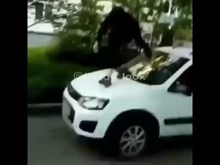 """В Казани парнишка """"походил"""" по крышам чужих автомобилей"""