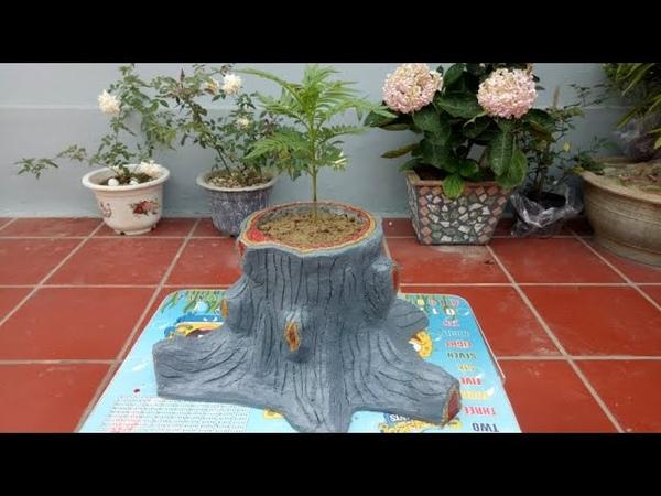 Make beautiful pots with cement at home easily tự làm chậu hoa bằng xi măng đẹp tại nhà dễ dàng