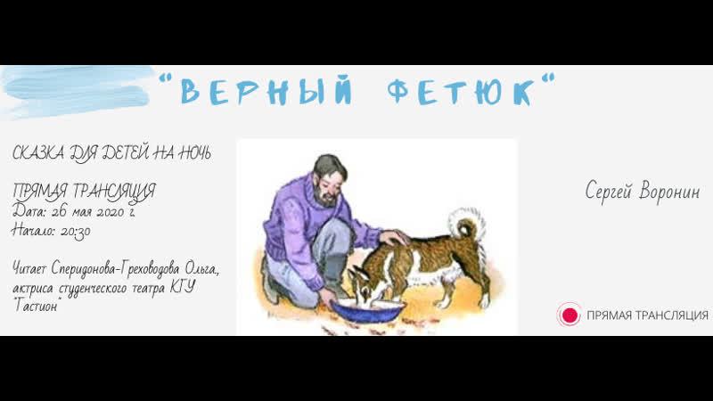 Верный Фетюк автор произведения Сергей Воронин .