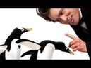 Комедия.Пингвины мистера Попера Фильм для вечернего просмотра