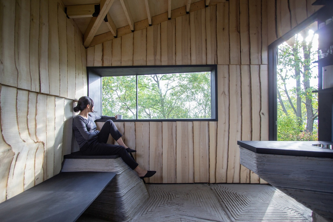 Hannah clads off-grid Ashen Cabin in New York with infested wood