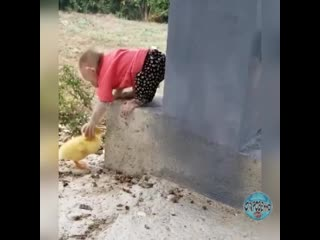 Человечеству надо у животных поучиться!!!!! А то столько зла в нашем мире.....