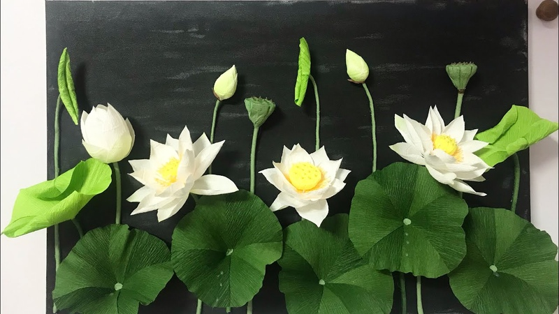 Bella's Craft How to make Lotus flower by crepe paper Hướng dẫn làm hoa và nụ hoa sen bằng giấy