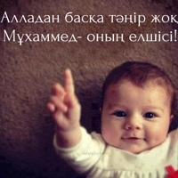 Фотография профиля Гулшат Тилеубаевой ВКонтакте