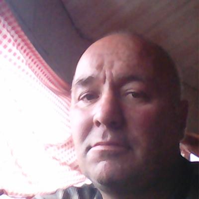 Гриша, 48, Priladozhskiy