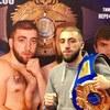 Боксеры Армянские