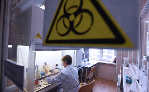 Вакцина от коронавируса, созданная в НИИ гриппа, п...