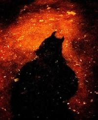 Интуитивная Темная