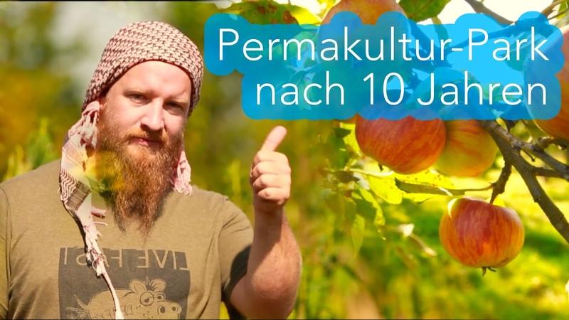 Permakultur Projekt nach 10 Jahren Jonas Gampe