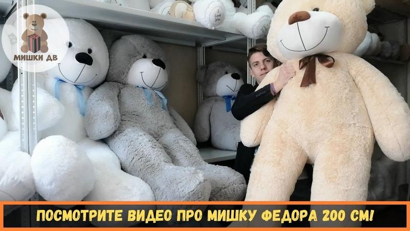 Большой плюшевый медведь во Владивостоке. Мишка Федор 200 см - от магазина подарков - Мишки ДВ