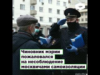 В Москве чиновник мэрии пожаловался на несоблюдение москвичами самоизоляции   ROMB