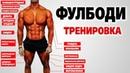 Лучшая ФУЛБОДИ программа тренировок для НАБОРА МАССЫ тренировка «А»