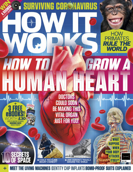 How It Works - Issue 138, 2020