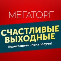 Логотип ТК МЕГАТОРГ Владимир