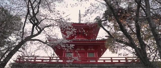 Japan EPIC Travel